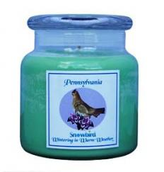 Snowbirds Green Candle