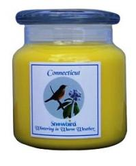Snowbirds Yellow Candle